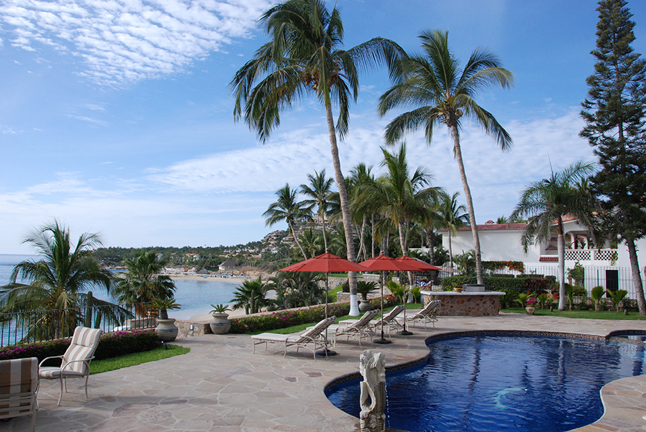 view from the pool overlooking the beach with large palm trees in view